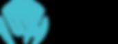 shaka designs, shaka designs logo, wix web designer