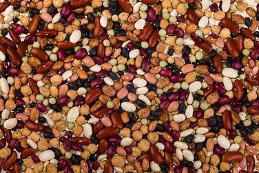Beans - Mixed-2nd.jpg