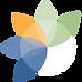 primacare logo icon