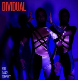 DIVIDUAL