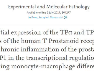 New paper on thromboxane receptors in prostate inflammation published in Experimental and Molecular