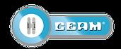 Ceam_1.png