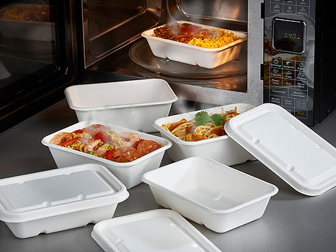Bagasse rectangular food containers and lids 640 x 480.jpg
