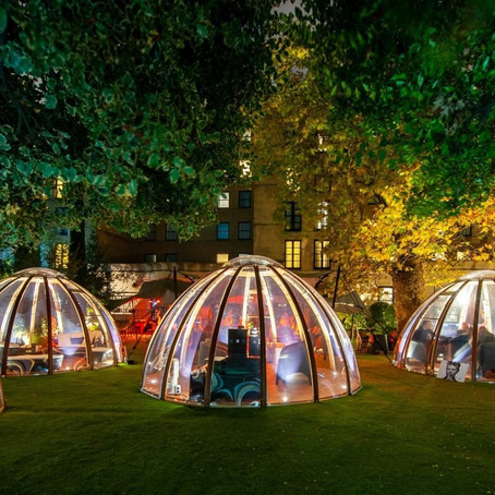 Dome Dining Ideas for 2019