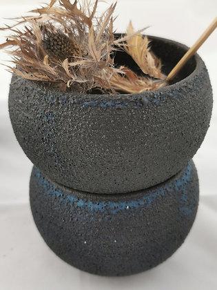 Planters noirs bleus