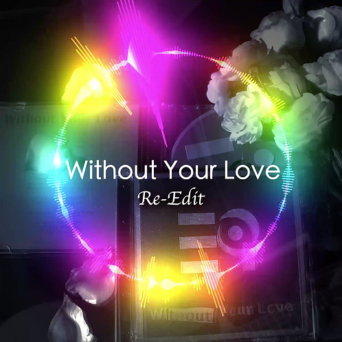 Without Your Love Re-Edit MP3 Package (MP3, Music Videos, Artworks)