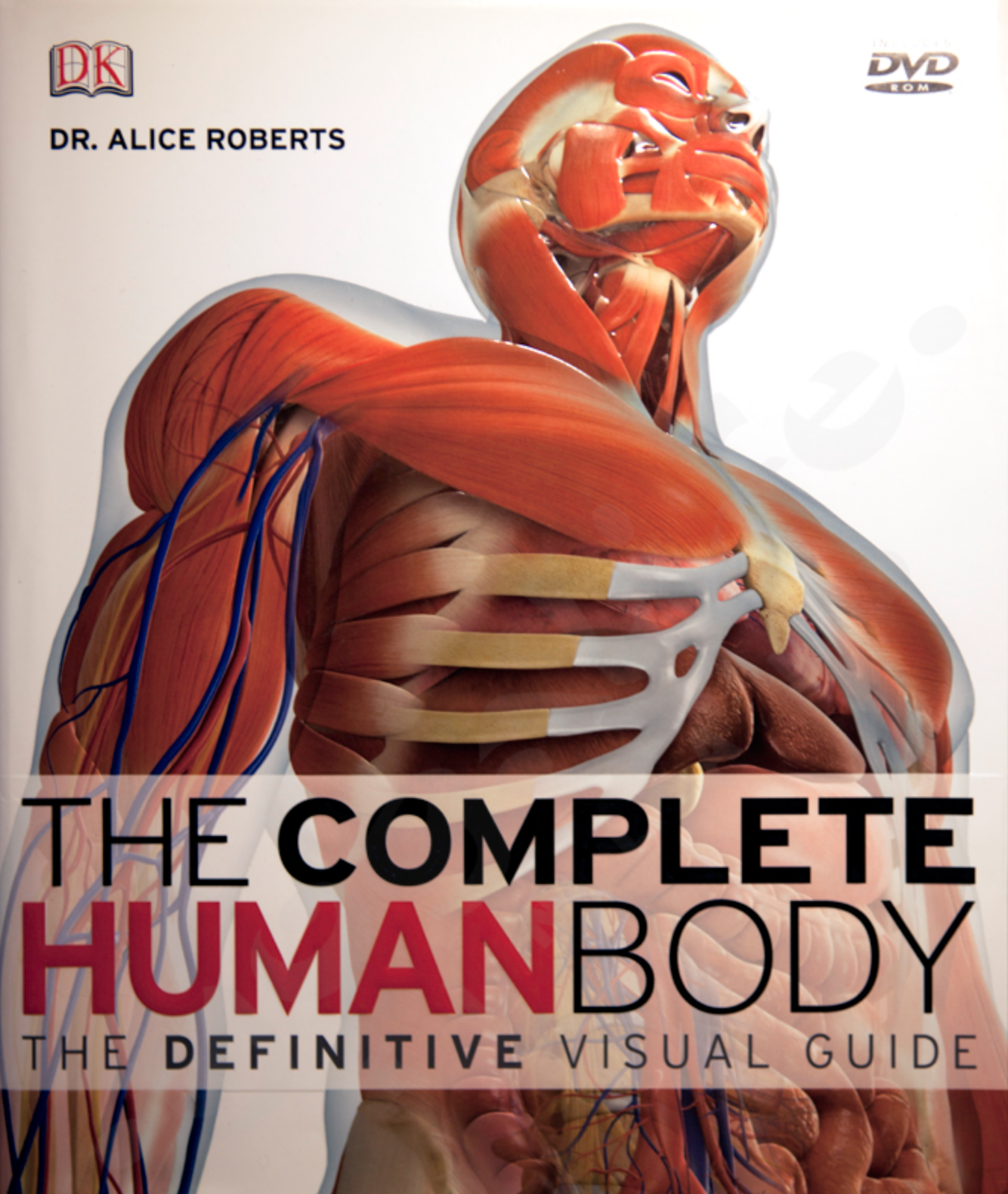 Sam Flax Human Body Visual Guide