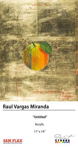 Raul Vargas Miranda