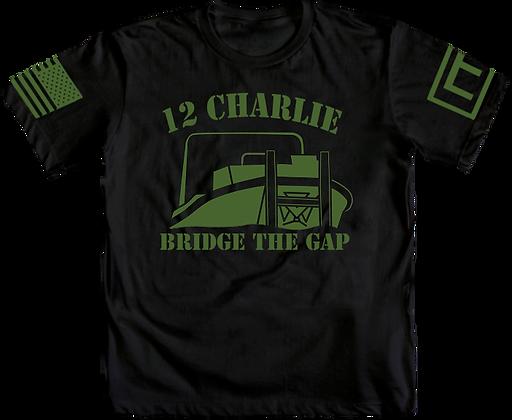 12C - Bridge the Gap
