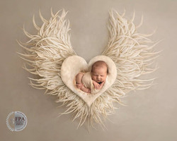 baby with wings image