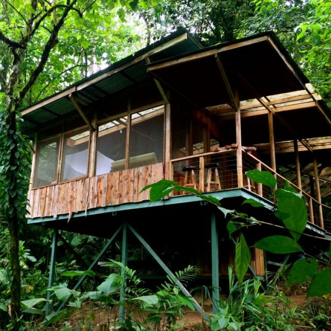 Casa del Tigre