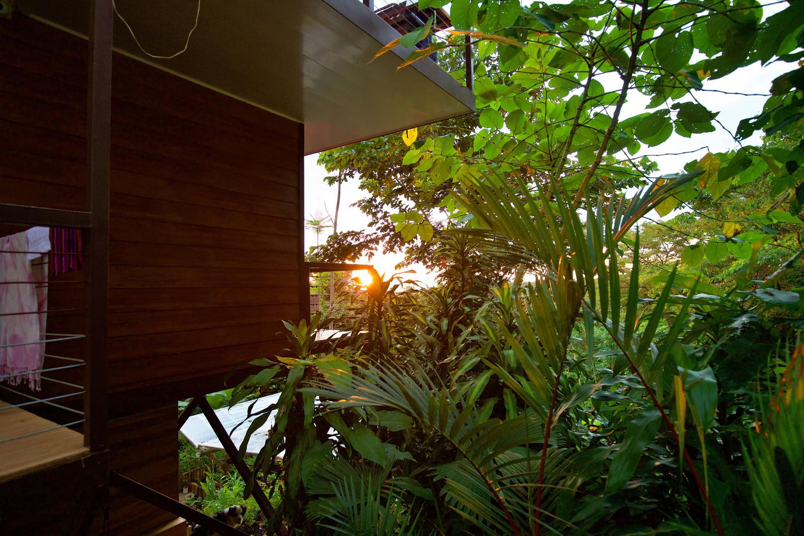 Garden 4-min.jpg