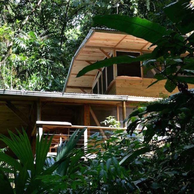 Casa Del Mono