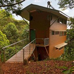 Casa Tamandua