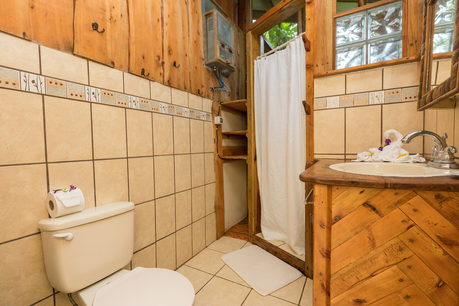 Bathroom with flushing toilet