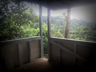 Main Bedroom views