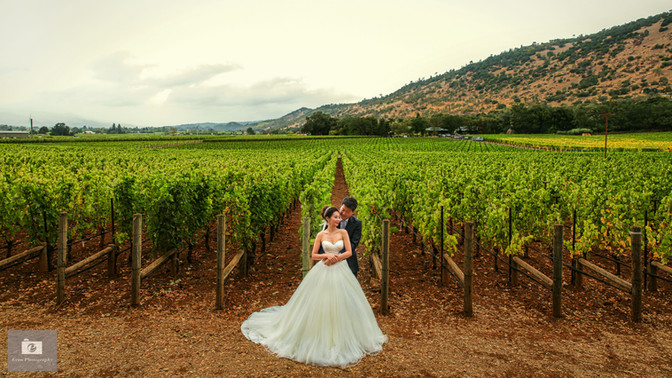 Michelle & Phillip's Napa wedding