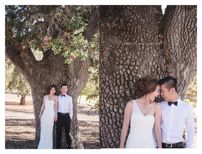 Zeny & Nick engagement photo