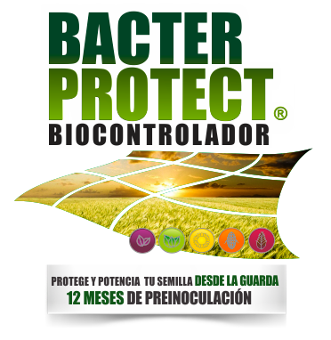 BACTER PROTECT