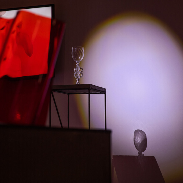 """Vessel"" video installation detail at the exhibition ""RED"" at ARS Art Factory, Tallinn photo: Priit Mürk/ERR"