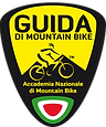 Scudetto Guida.png