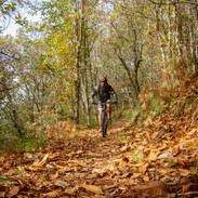 il single track finale, in autunno