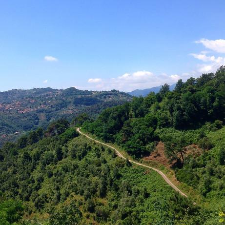vista dalla Panoramica