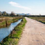 strada sterrata in Padule