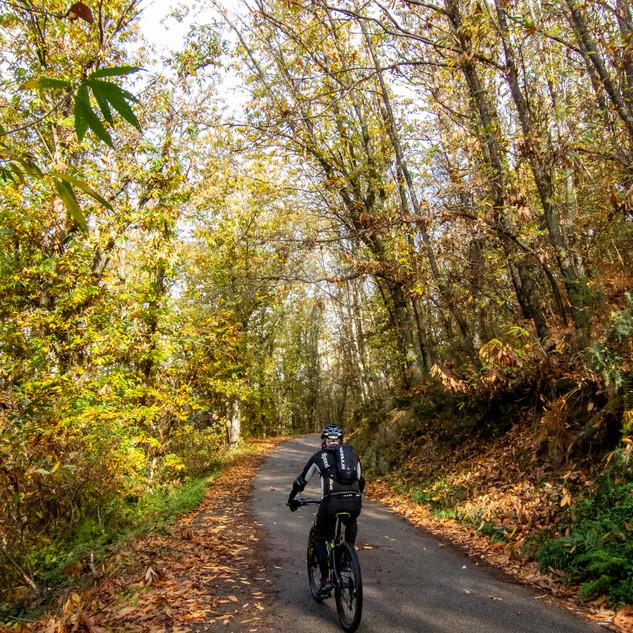 la strada che porta a Pasquilio in autunno