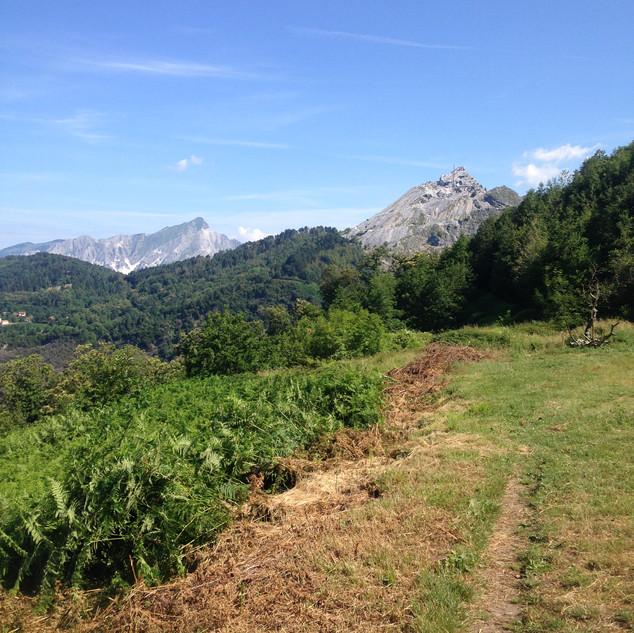 il sentiero e sullo sfondo il monte Carchio e monte Sagro