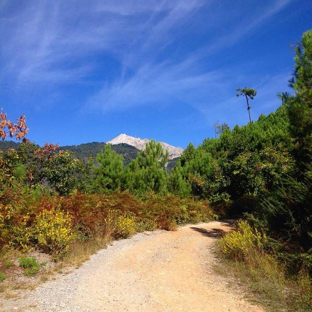 sullo sfondo il monte Carchio