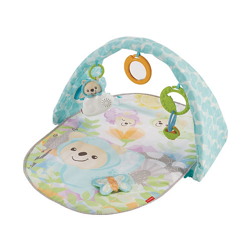 Fisher Price Butterfly Dreams Musical Gym