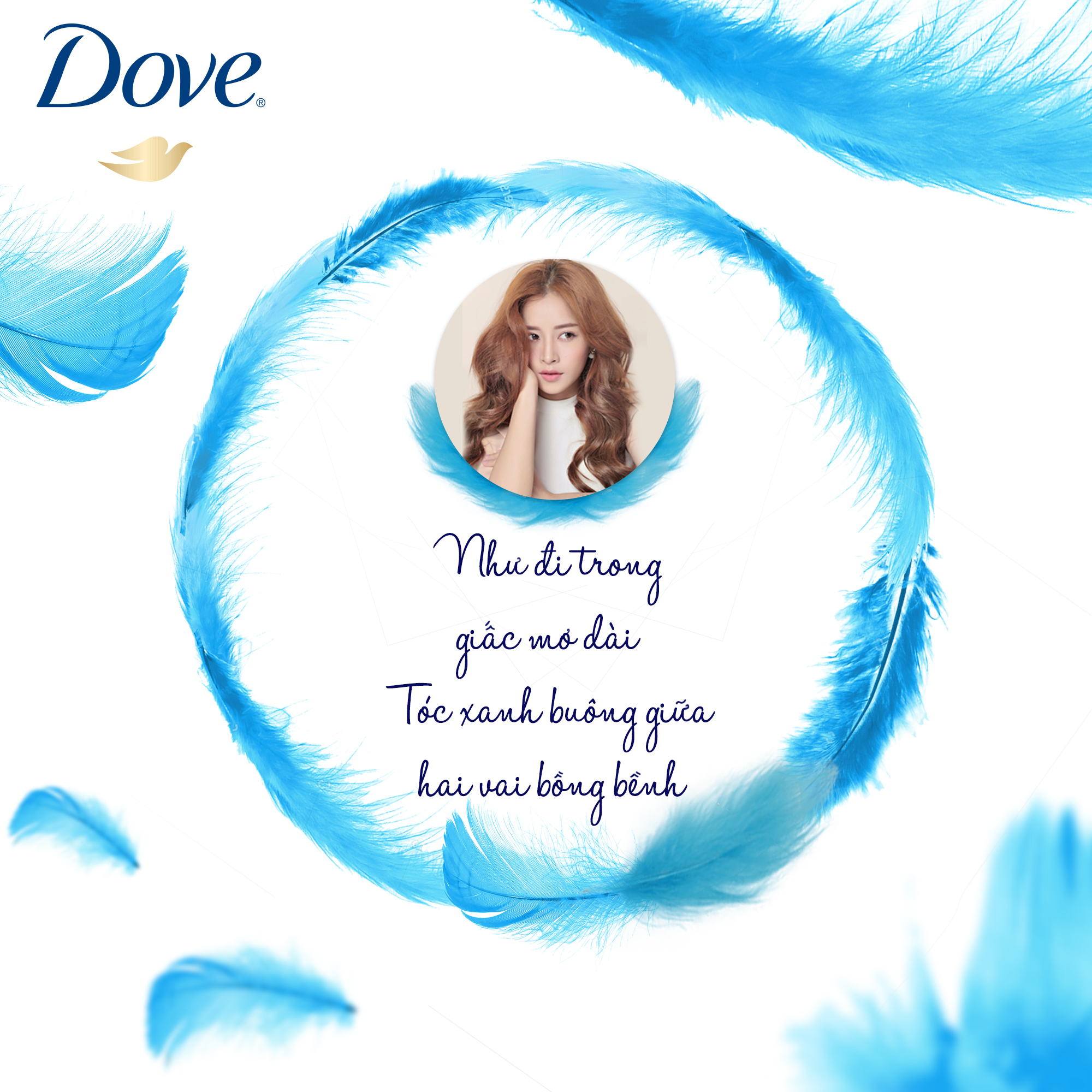 Dove Template_Feather