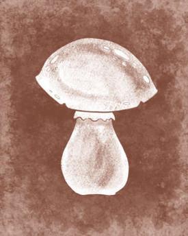 rjw-36-brown-mushroom-cover-100-recipes-