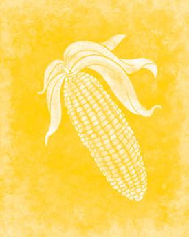 rjw-31-yellow-cover-100-recipes-c60.jpg