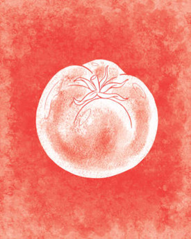 rjw-33-red-tomato-cover-100-recipes-c60.