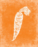 rjw-35-orange-carrot-cover-100-recipes-c