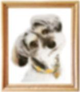 イラスト犬.jpg