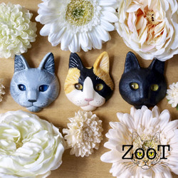 ZooT  ☝Click
