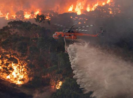 Australian Bushfires Are a Serious Problem