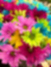 pexels-photo-70330.jpg