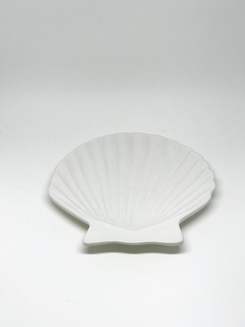 White Scallop Shell Plate