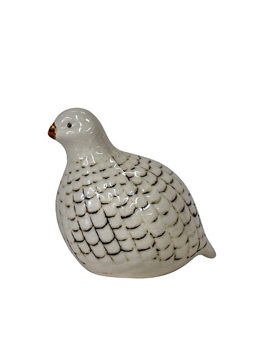 Guinea Fowl Petite
