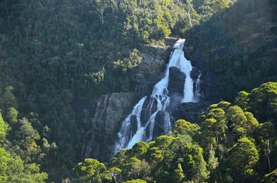St Columba Falls Tasmania
