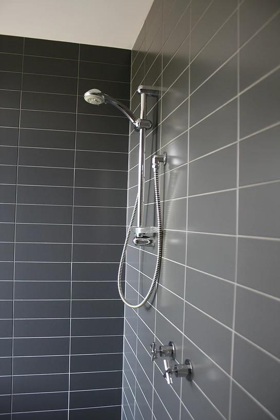 Pardalote shower