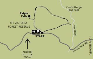 Ralphs Falls