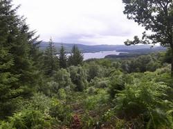 Loch view high