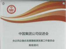 CGCA Certificate.jpg