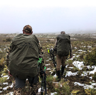 hunt the elk not the weather