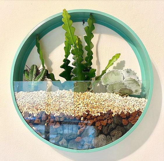 עציץ עגול דקורטיבי לקיר - ירוק/חאקי או צהוב